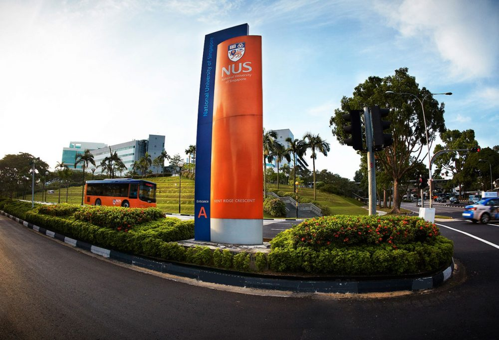 Seo Agency Nus University