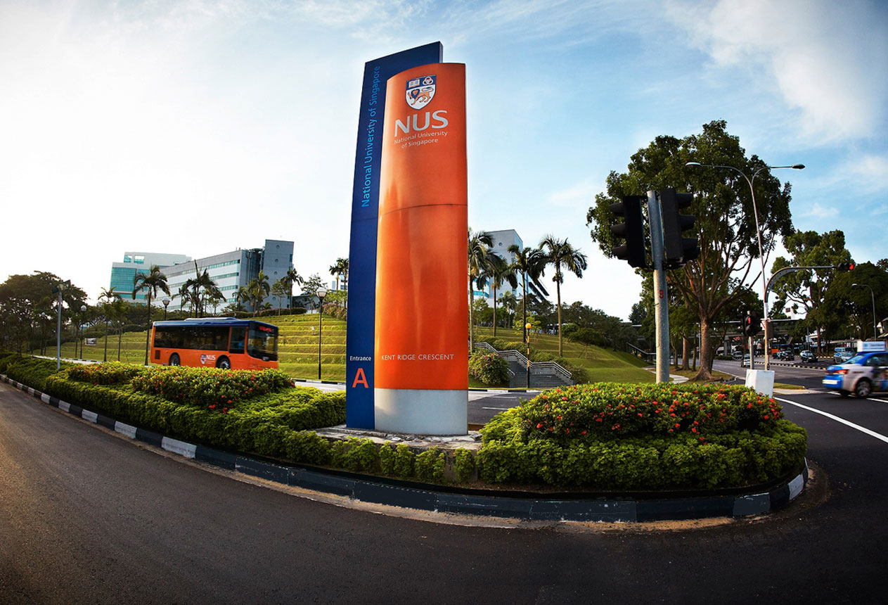 Seo Agency Nus University